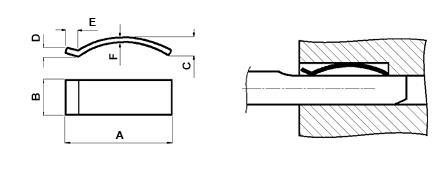 Pag305-16.jpg